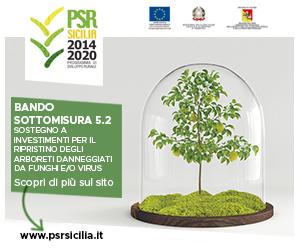 dip. agricoltura psr sicilia 5.2