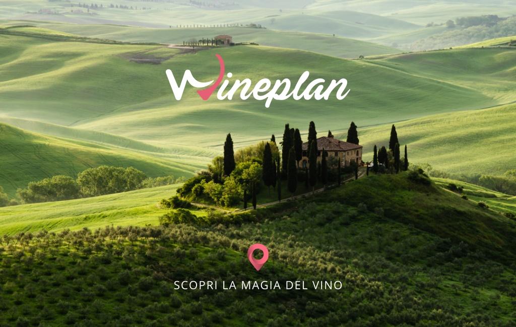 wineplain