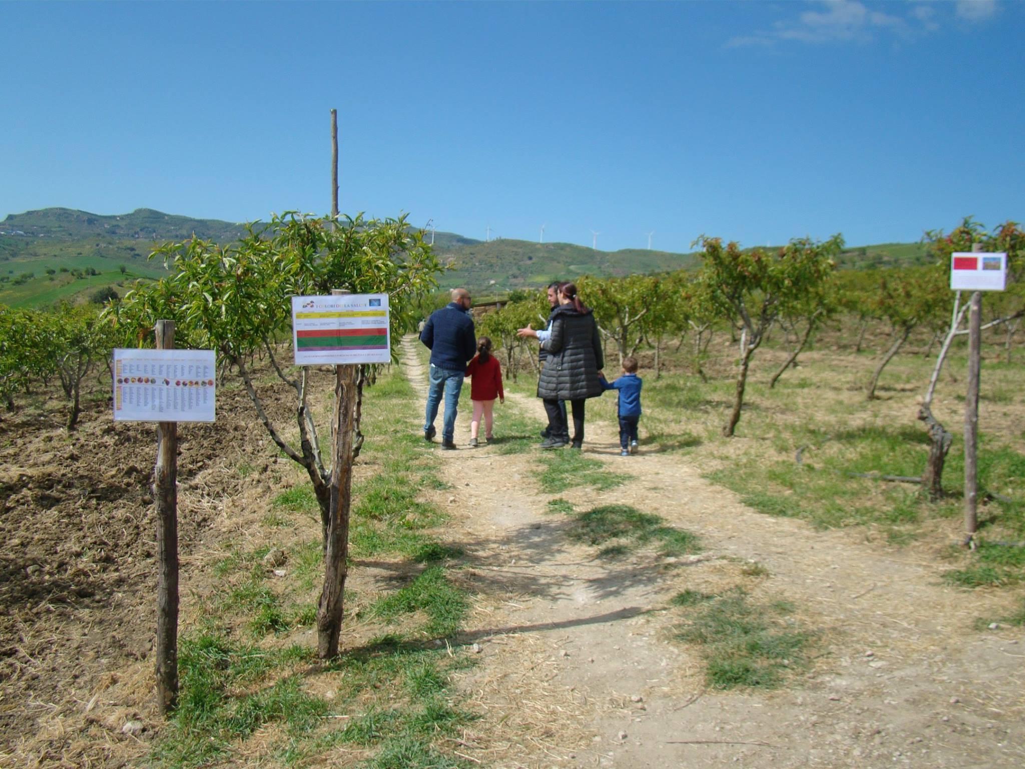 Agricoltura_visita_fattoria_didattica