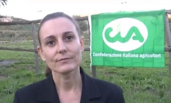 Castagna-Cia