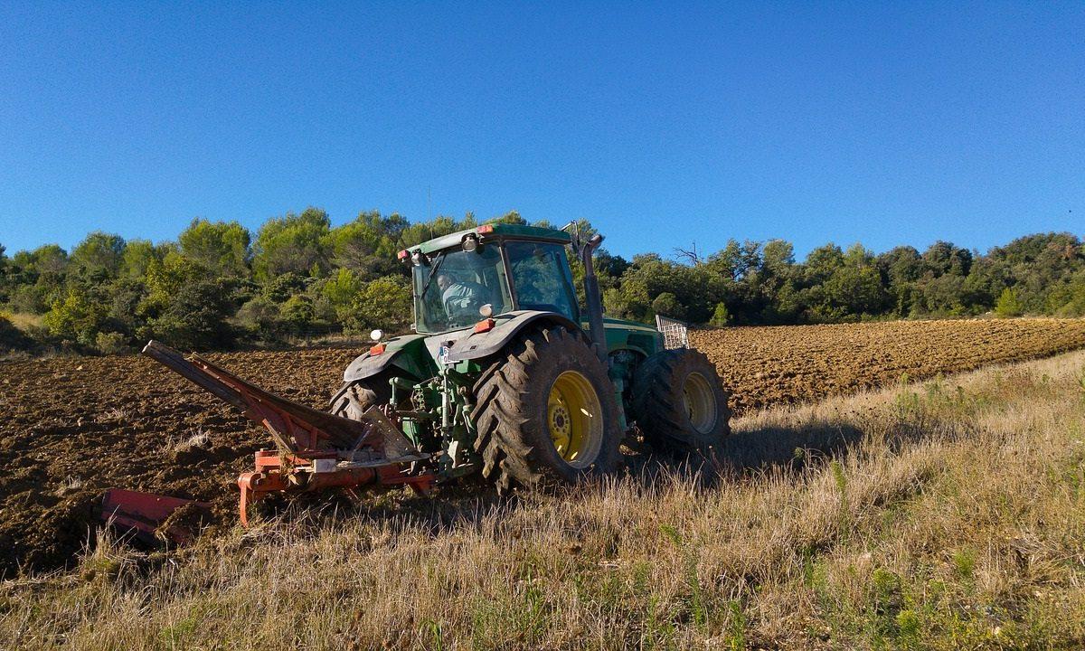 banca delle terre agricole