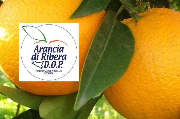 Arancia-di-Ribera-Dop
