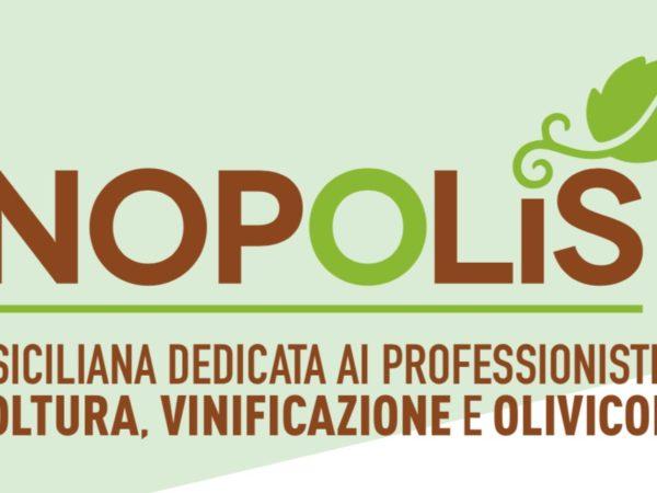 Enopolis-2018