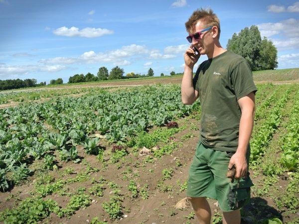 Ismea-giovane-agricoltore