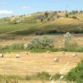 territori montani Imu