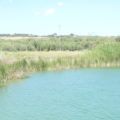 acquacoltura rurale Feamp