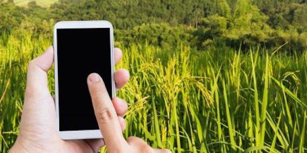 innovazione in agricoltura