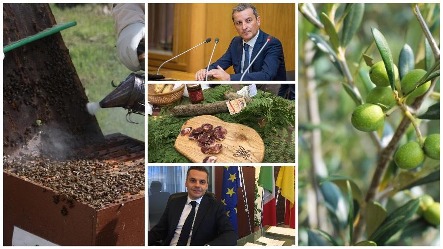 Nel Tg della settimana, notizie in pillole sull'agricoltura, l'agroalimentare e il mondo rurale|Video