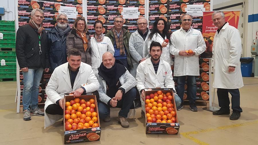 Arance siciliane in Cina: i primi due container di Oranfrizer in partenza dal porto di Catania