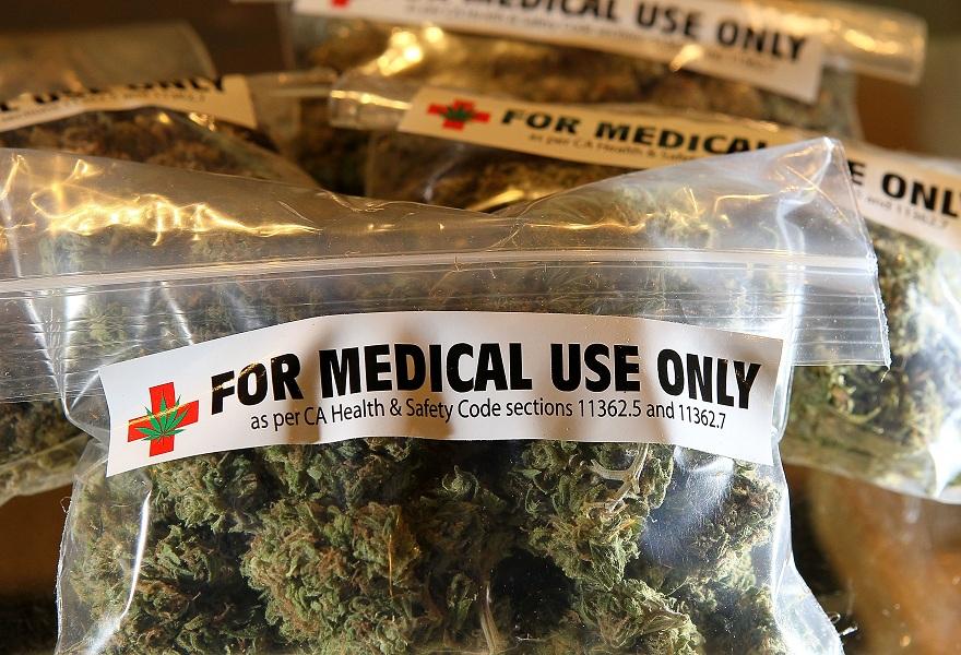 Cannabis per la salute e per l'industria, ciclo di convegni a Catania