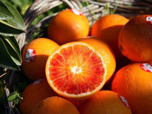 Consorzio di Tutela Arancia rossa di Sicilia Igp