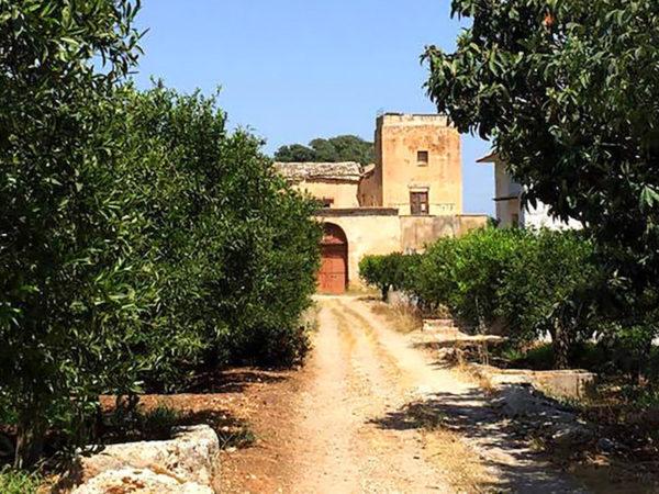 agriturismo agrumeti storici della Favara