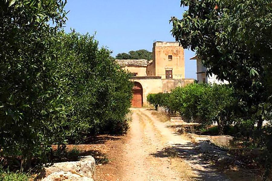 agrumeti storici della Favara