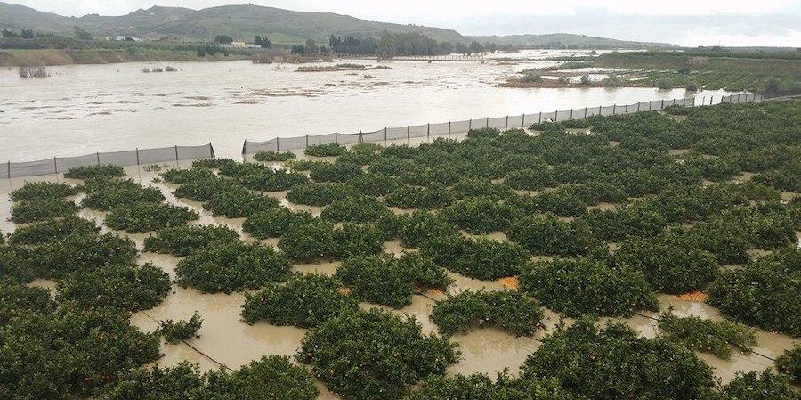 danni alluvione