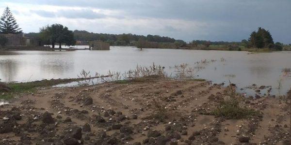 agricoltura sott'acqua