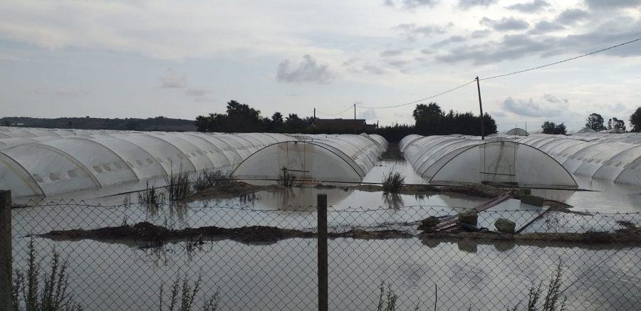 Deliberato lo stato di calamità naturale, in agricoltura danni per 350 milioni