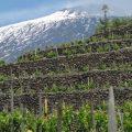 Crossing Etna