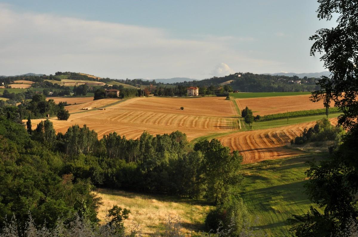Mipaaf: nel 2020 erogati oltre 3 miliardi di euro alle imprese agricole per la transizione ecologica