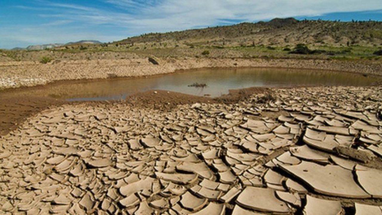 Allarme siccità, Le associazioni di settore denunciano i problemi alle colture