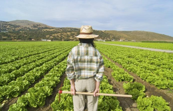 Agricoltura Ismea