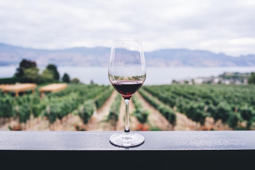 consorzio tutela vini Doc Sicilia
