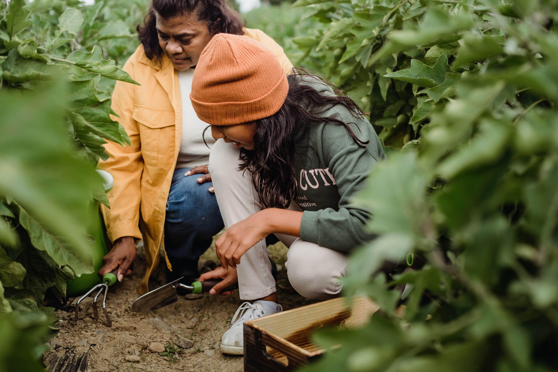 I piccoli agricoltori per trasformazione sistemi alimentari: con l'IFAD al pre-Vertice ONU