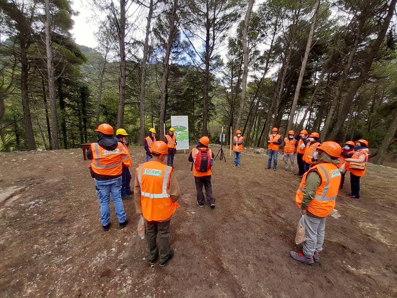 Formazione forestali, Scilla: «Regione Siciliana tra le prime ad accogliere novità Testo unico»